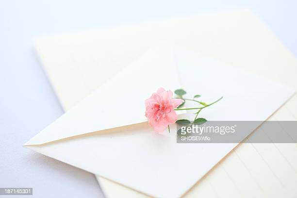 Miniature rose and letter