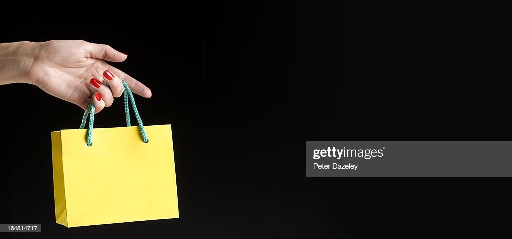 Miniature shopping back with copy space