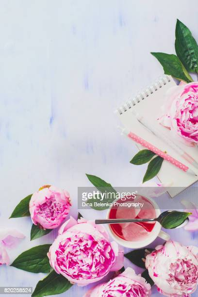Minimal styled flat lay with peony flowers, petals, stationery, tea cup and spoon on a pastel background
