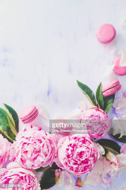 Minimal styled flatlay with peony flowers, petalsand pink macaroons on a pastel background with copy space