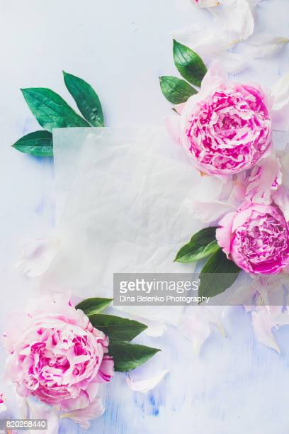 Minimal styled flatlay with pink peony flowers, petals, paper and leaves on a pastel background