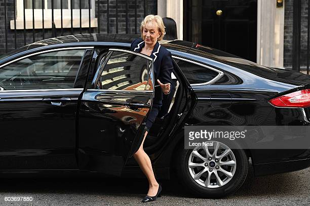 Minister for Energy and Climate Change Andrea Leadsom arrives ahead of the weekly Cabinet meeting in Downing Street on September 13 2016 in London...