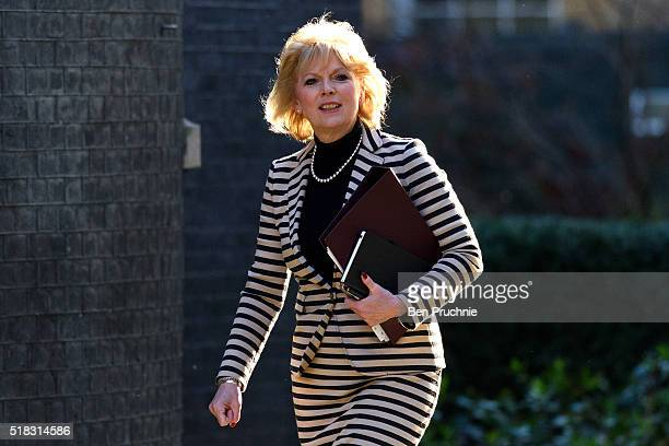 Minister for Small Business Anna Soubry arrives at Number 10 Downing Street for a meeting with British Prime Minister David Cameron on March 31 2016...