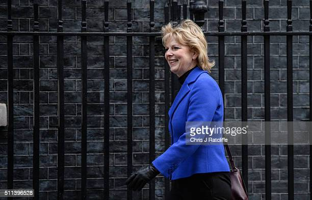 Minister for Small Business Industry and Enterprise Anna Soubry arrives at Downing Street on February 20 2016 in London England Mr Cameron has...
