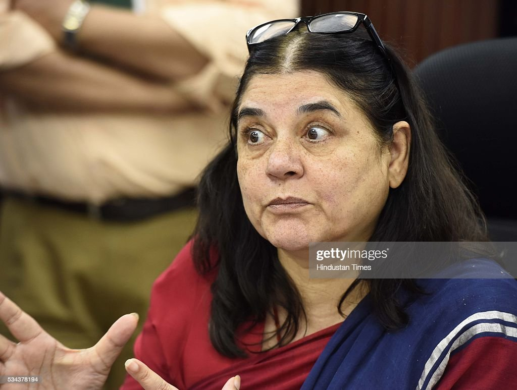 Minister of Women and Child Development Maneka Sanjay Gandhi addresses media persons during the release and launch the Draft Rules of Juvenile Justice (Care & Protection of Children) Act, 2015, Common Application software & Rapid Reporting System as part of digitization of the Anganwadis, and Online training portal for training of Anganwadis social workers for shifting to the total digitization process, at Conference Hall, Shastri Bhawan, on May 25, 2016 in New Delhi, India. According to the draft rules, proper medical and legal aid will be provided to juvenile criminals and their parents and guardians will be duly informed. No child between 16 and 18 years of age in conflict with law will be handcuffed or sent to jail or lock-up, according to the draft rules.