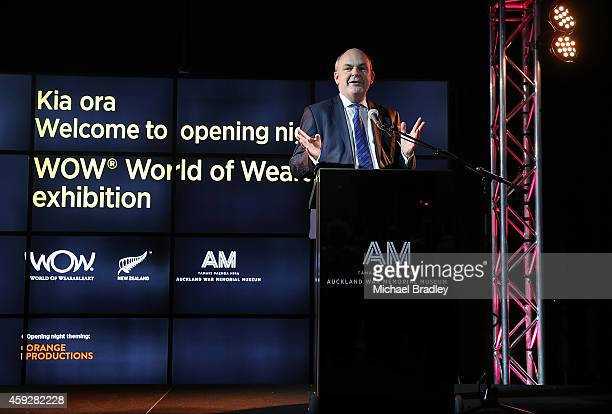 Minister Steven Joyce speaks at the Auckland War Memorial Museum's World of Wearable Art exhibition opening at Auckland Museum on November 20 2014 in...