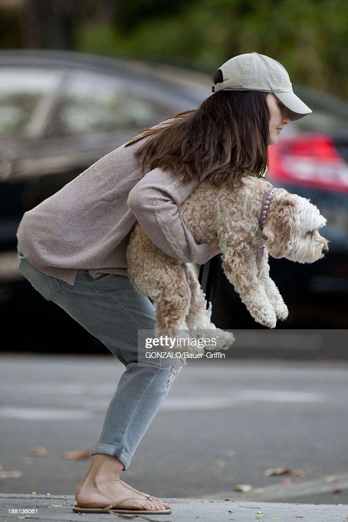 Minka Kelly is seen on November 15, 2013 in Los Angeles, California.