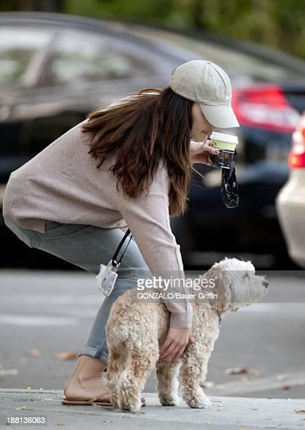 Minka Kelly is seen on November 15 2013 in Los Angeles California