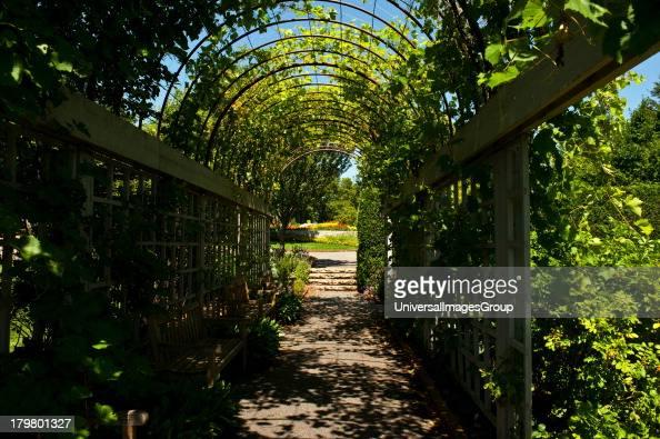 Minnesota Chaska Minnesota Landscape Arboretum vine covered trellis tunnel
