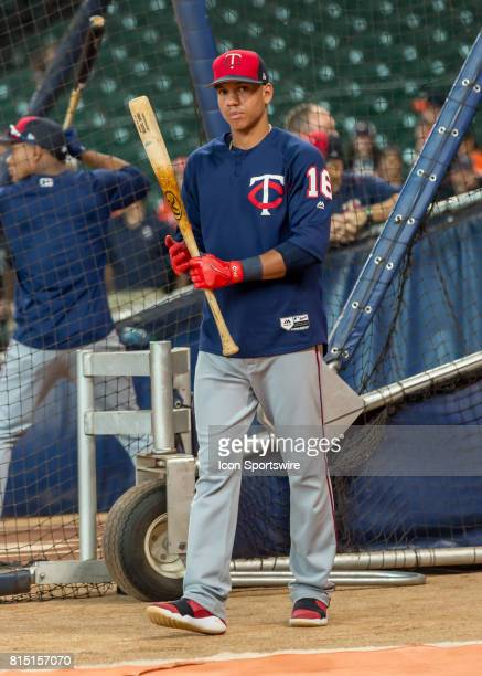 Minnesota Twins shortstop Ehire Adrianza warms up in the batting cage during the MLB game between the Minnesota Twins and Houston Astros on July 14...