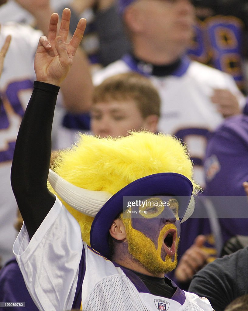 A Minnesota Vikings fan cheers on November 11, 2012 at Mall of America Field at the Hubert H. Humphrey Metrodome in Minneapolis, Minnesota.