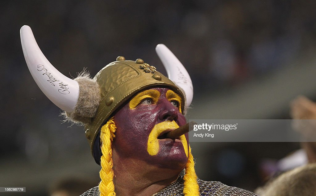 A Minnesota Vikings fan is shown on November 11, 2012 at Mall of America Field at the Hubert H. Humphrey Metrodome in Minneapolis, Minnesota.