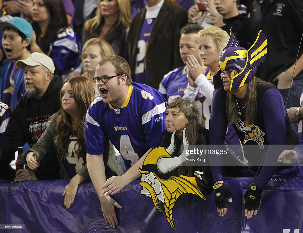 Minnesota Vikings fans cheer during the game against the Detroit Lions on November 11, 2012 at Mall of America Field at the Hubert H. Humphrey Metrodome in Minneapolis, Minnesota.