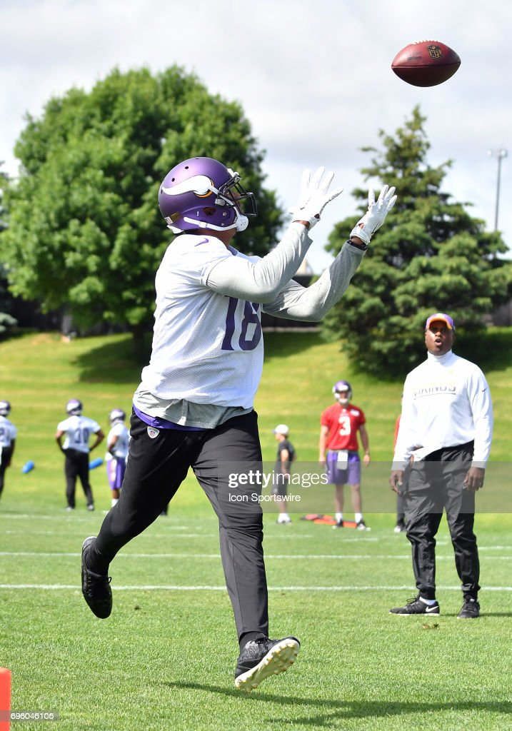 Minnesota Vikings wide receiver Michael Floyd (18) makes a grab in the end zone during Minnesota Vikings Minicamp on June 14, 2017 at Winter Park in Eden Prairie, MN.