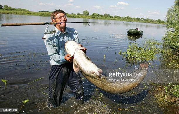 An angler struggles with a catfish 13 June 2007 during fishing on the river of Pripyat some 230km southwest from Minsk AFP PHOTO / VIKTOR DRACHEV