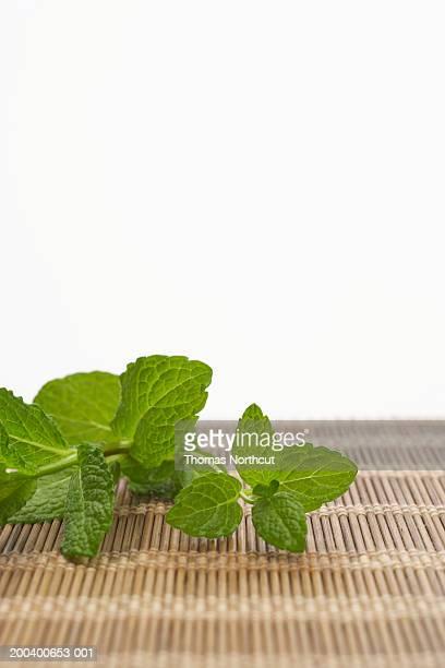 Mint leaves atop mat (focus on mint)