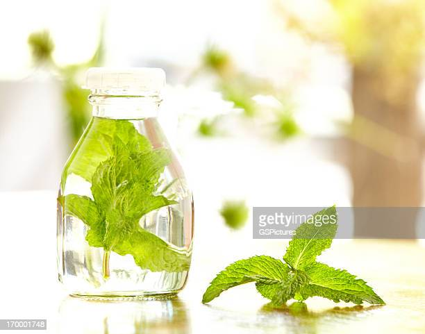 Mint leaves in a bottle filled with water outdoors