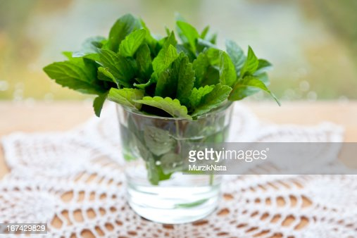 mint leaves in a glass with water : Stock Photo
