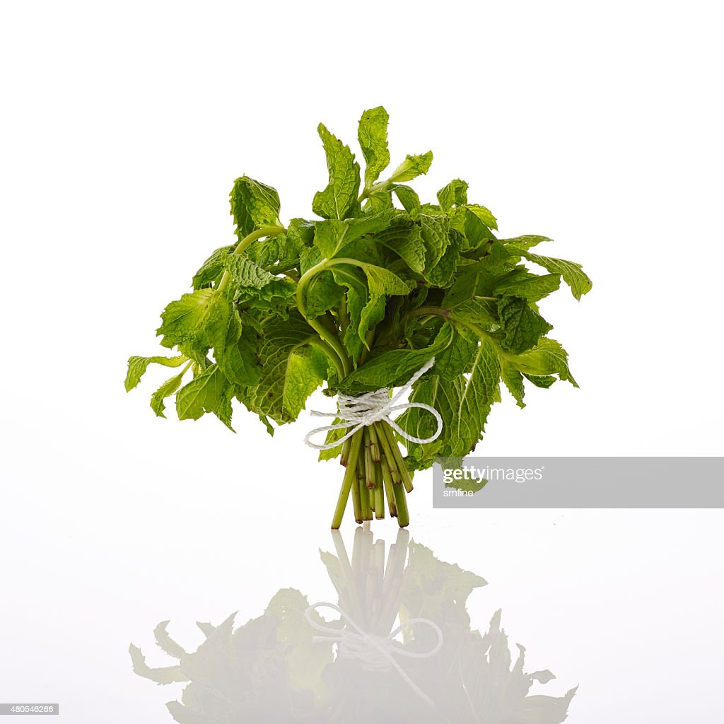 mint : Stock Photo