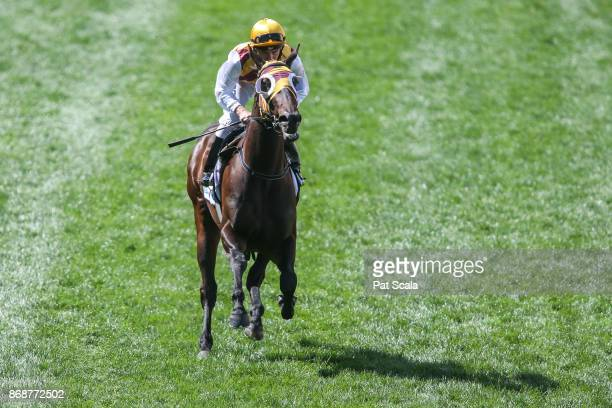 Mintha ridden by Luke Currie heads to the barrier before the italktravel Fillies Classic at Moonee Valley Racecourse on October 28 2017 in Moonee...