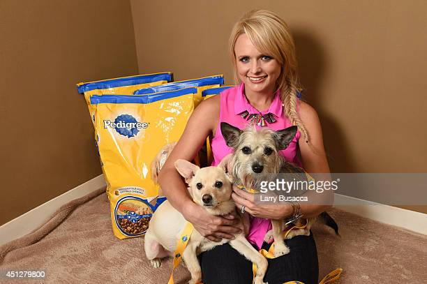 Miranda Lambert unveils her new documentary film which showcases her passion for dog adoption and highlights the renovation of her hometown animal...