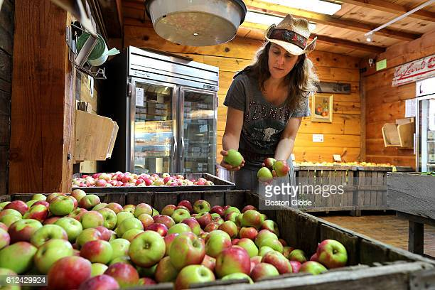 Miranda Russell holds different size apples from the orchard that are for sale in the store at Russell Orchards in Ipswich Mass on Sept 13 2016 The...