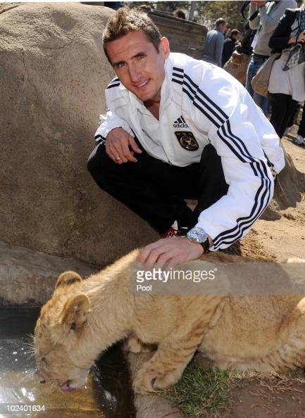 Miroslav Klose of the German National Team strokes a lion cup during a visit at the Lion Park on June 25 2010 in Lanseria South Africa