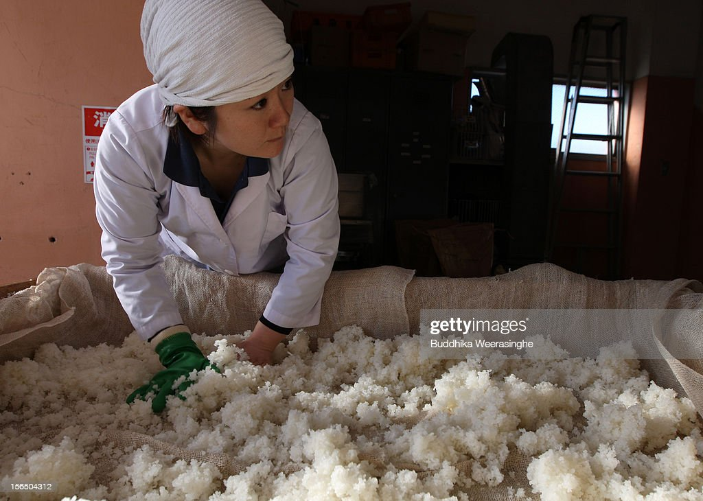 Misa Kawaisi, chief sake brew master, cools steamed rice at Nadagiku-Shozo sake brewery on November 16, 2012 in Himeji, Japan. Kawaishi, one of a few female sake brew masters, is a unique figure in male-diminated sake brewers world.