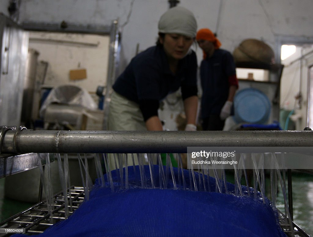 Misa Kawaisi, chief sake brew master, washes rice in 5 degree water at Nadagiku-Shozo sake brewery on November 16, 2012 in Himeji, Japan. Kawaishi, one of a few female sake brew masters, is a unique figure in male-diminated sake brewers world.