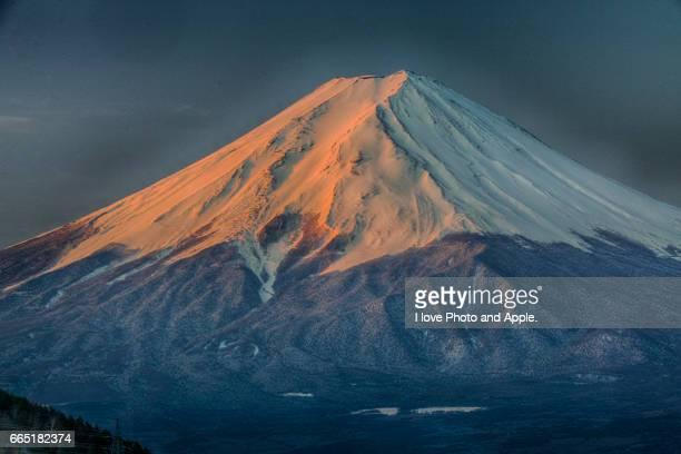 Misaka Red Fuji