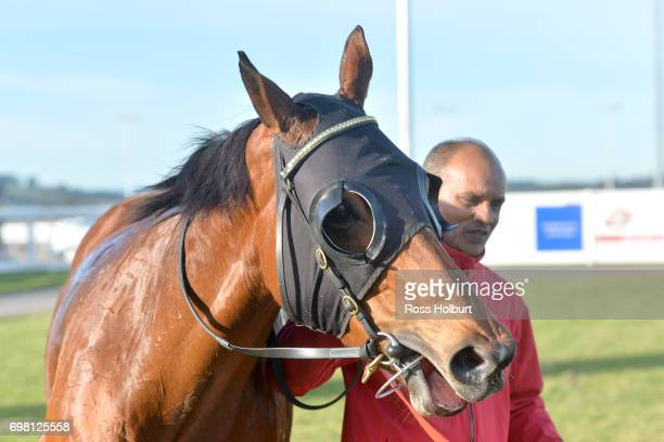 Miss Clooney after winning the IGA Liquor BM70 Handicap at Racingcom Park Synthetic Racecourse on June 20 2017 in Pakenham Australia