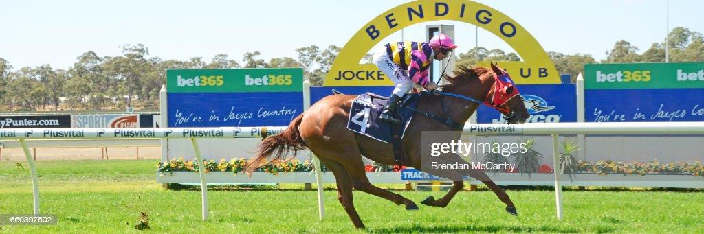 Miss Kashosa ridden by Dean Holland wins the Scott McGrory Maiden Plate at Bendigo Racecourse on March 14, 2017 in Bendigo, Australia.