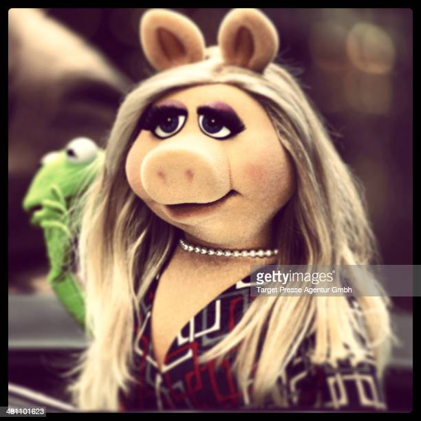 Miss Piggy attends the 'Muppets most wanted' Photocall at Sony Centre on March 28 2014 in Berlin Germany