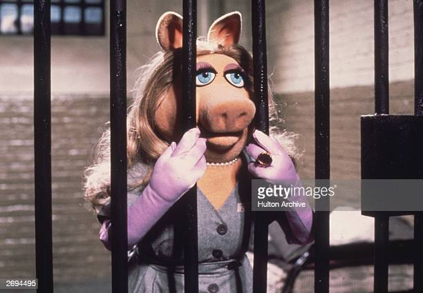 Miss Piggy is framed for the theft of a jewel and languishes in jail in Jim Henson's 'The Great Muppet Caper'