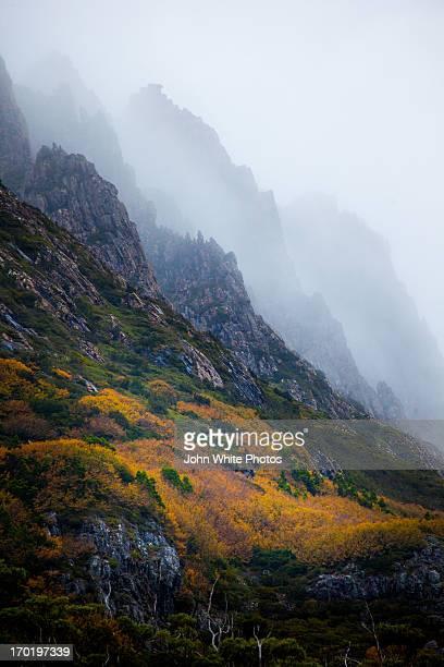 Mist over Cradle Mountain. Tasmania. Australia.
