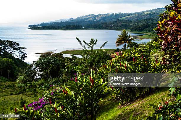Mist over lake Arenal