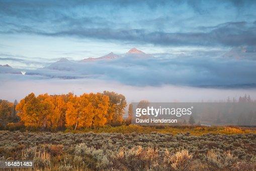 Mist over rural landscape : Stock Photo