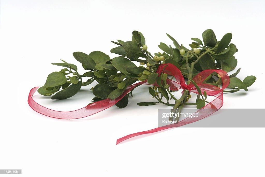 Mistletoe and Ribbon