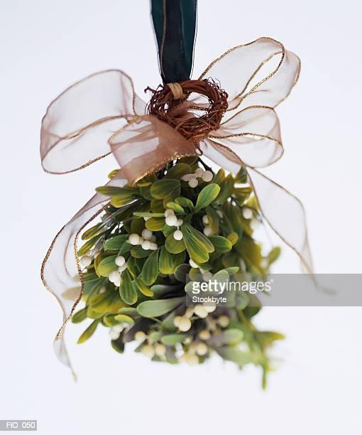Mistletoe hanging from ribbon