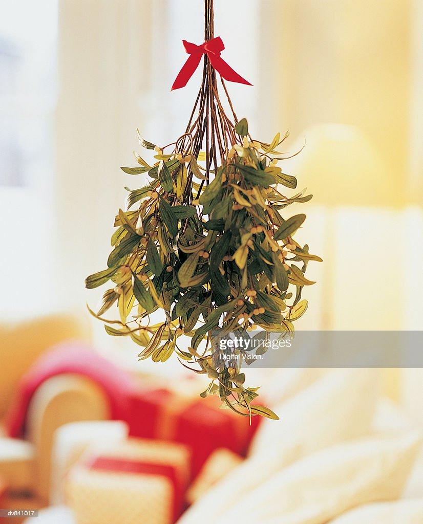 Mistletoe Hanging in Room