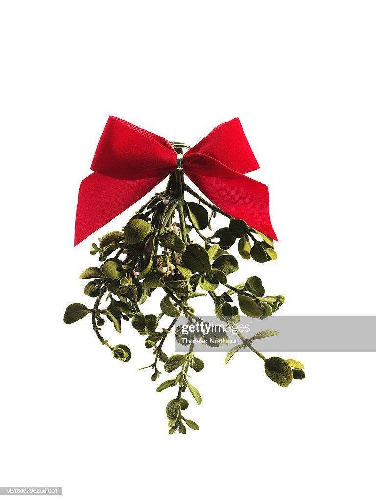 Mistletoe on white background