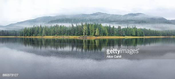 Misty Alaska shore - trees + mountains reflected