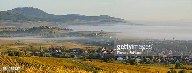 Misty Alsace panorama