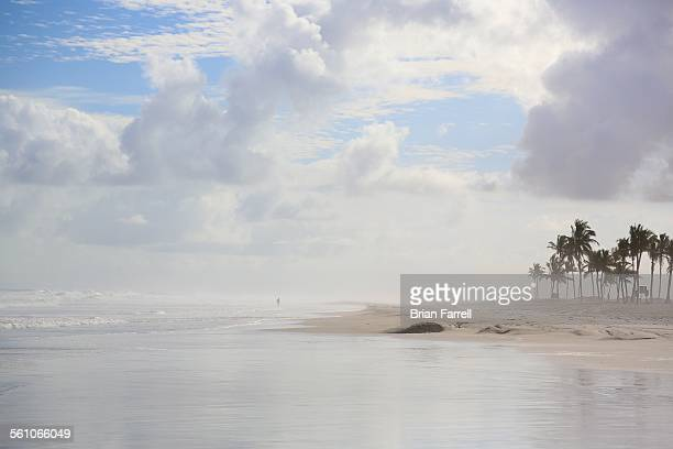 Misty Arabian Sea Beach