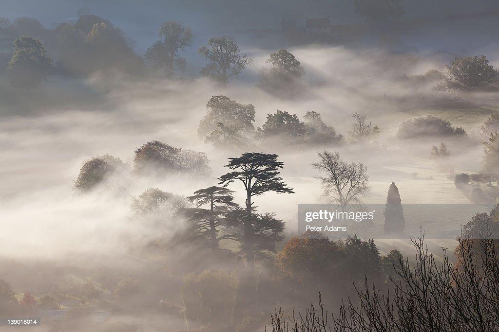 Misty Autumn Morning, Uley, Gloucestershire, UK : Foto de stock