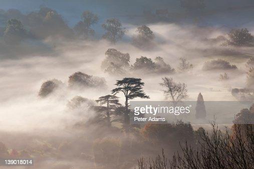 Misty Autumn Morning, Uley, Gloucestershire, UK