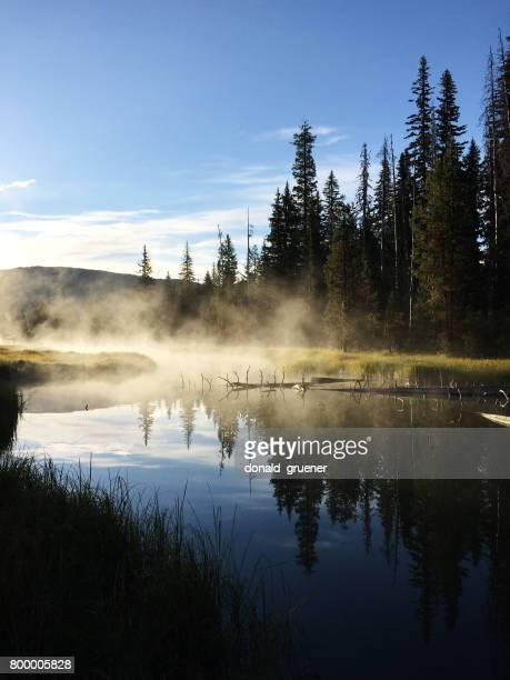 Misty Headwaters of the Deschutes River at Little Lava Lake, Oregon