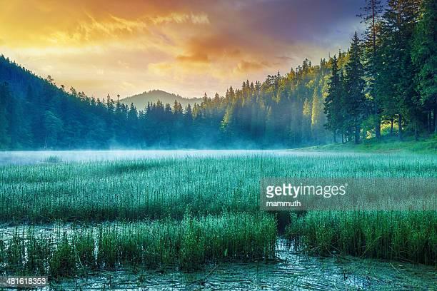 Misty Lago ao nascer do sol