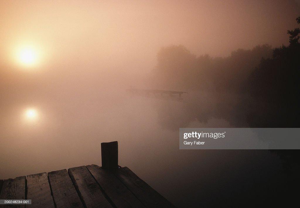 Misty lake, Louisiana, USA : Stock Photo