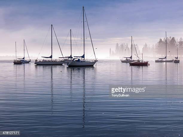 Misty Morning on Pelican Bay